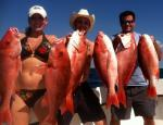 Red Snapper Fishing Charters