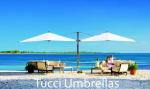 Patio Umbrellas by Tucci and Treasure Garden