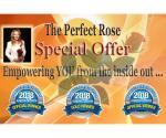 The Perfect Rose Special Offer Readers Choice 2018